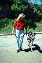 Sepp! : Karen and her dog, Sepp demonstrate effective Dog Training