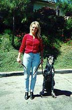 Automatic Sit at Heel : Karen and her dog, Sepp demonstrate effective Dog Training