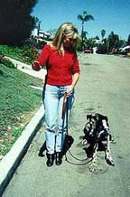Down! : Karen and her dog, Sepp demonstrate effective Dog Training